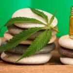"""""""Norma da Anvisa inviabiliza produção nacional de cannabis e levará a monopólio"""" ☀"""