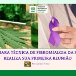 CÂMARA TÉCNICA DE FIBROMIALGIA DA SBEC REALIZA SUA PRIMEIRA REUNIÃO