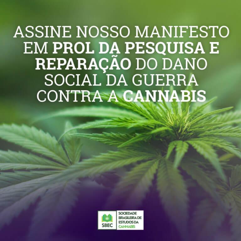 manifesto maconha
