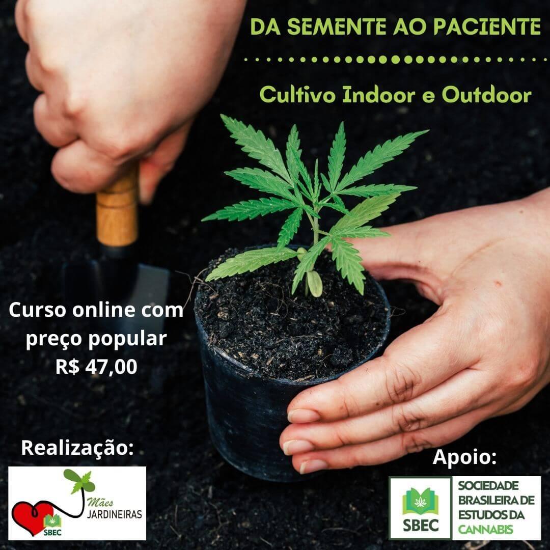 Curso de Cultivo Da semente ao paciente 4