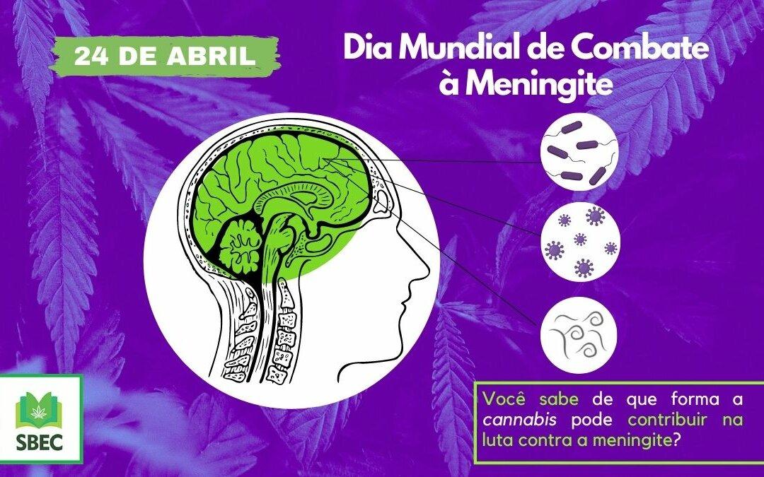 Copia de Dia Mundial de Combate A Meningite